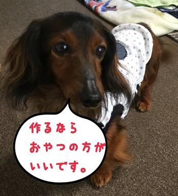 えいと服3.JPG